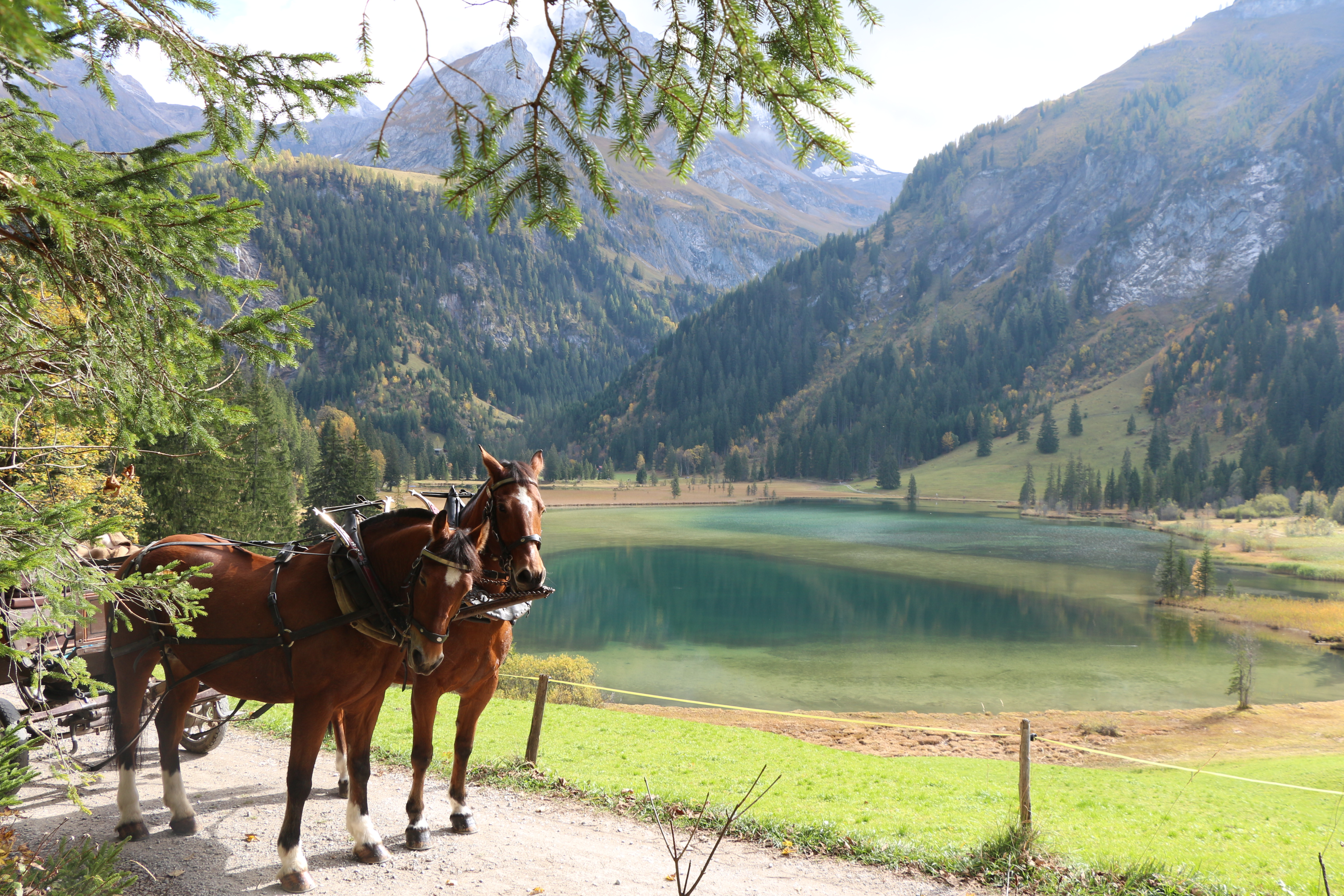 Gstaad (126)