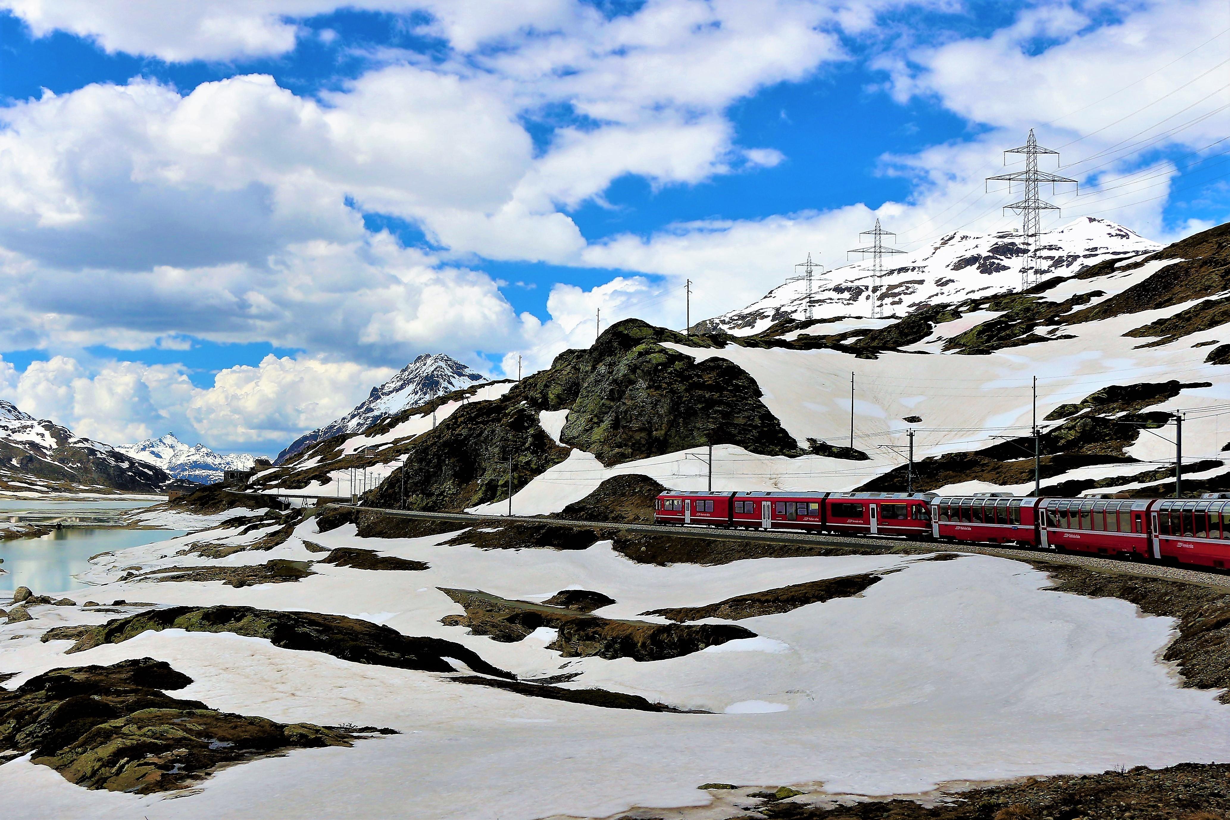 Swiss travel system (289)
